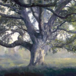 Adam Wolpert: Pathways to Presence - Exploring Form and Energy in Nature